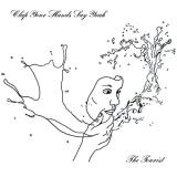 Clap Your Hands Say Yeah Tourist