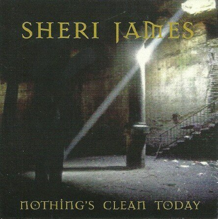 Sheri James Nothing's Clean Today