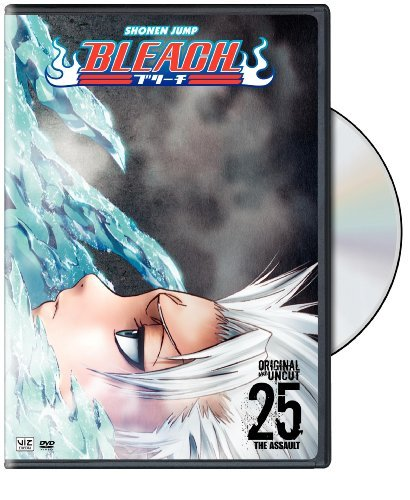Bleach Vol. 25 Nr