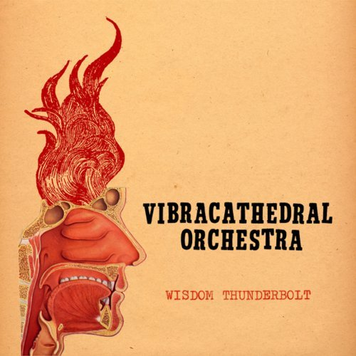 Vibracathedral Orchestra Wisdom Thunderbolt