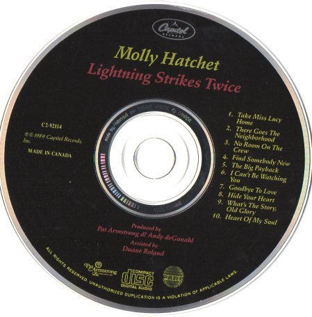Molly Hatchet Lightning Strikes Twice