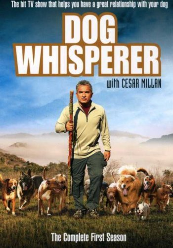 Dog Whisperer Dog Whisperer With Cesar Milla Nr 4 DVD