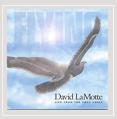 David Lamotte Flying Live From The Grey Eagle