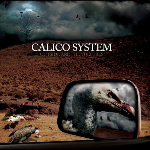 Calico System Outside Are The Vultures