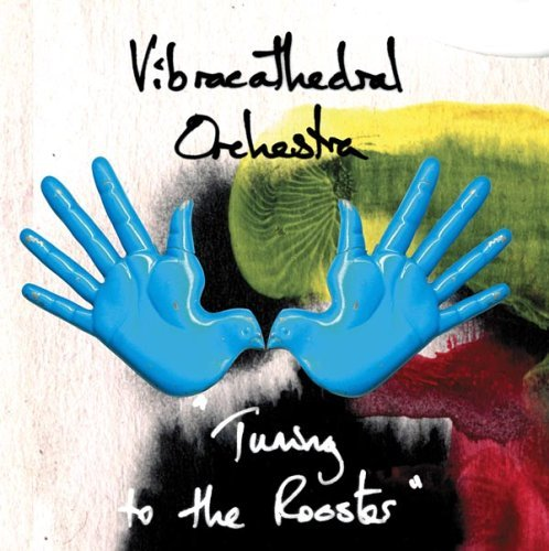 Vibracathedral Orchestra Tuning To The Rooster