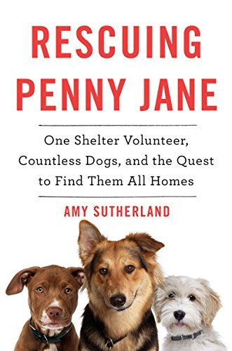 Amy Sutherland Rescuing Penny Jane One Shelter Volunteer Countless Dogs And The Qu