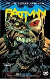 Tom King Batman Vol. 3 I Am Bane (rebirth)