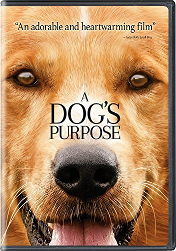 A Dog's Purpose Gad Quaid Lipton DVD Pg