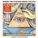 Where The Pyramid Meets The Eye A Tribute To Roky Erickson 2 Lp