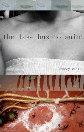 Stacey Waite The Lake Has No Saint