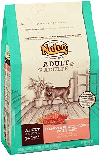 Natural Choice Wholesome Essentials Cat Salmon Rice 3lb Qb 6