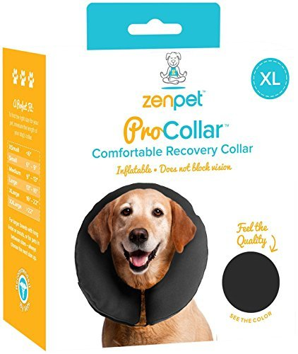 G&b Procollar Inflatable Xl Procollar Inflatable Recovery Collar