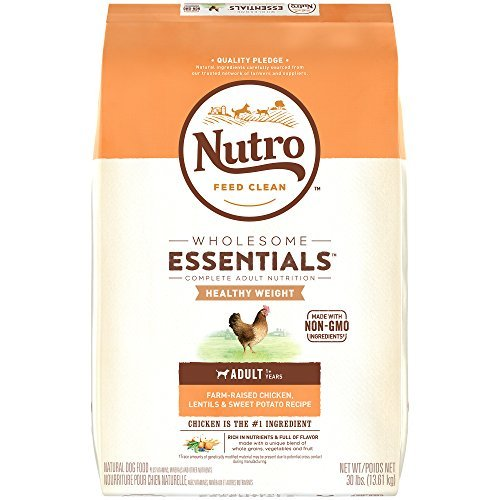Natural Choice Lite Chicken Brown Rice Oatmeal Adult Dog 30lb