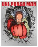 One Punch Man One Punch Man Blu Ray DVD Limited Edition