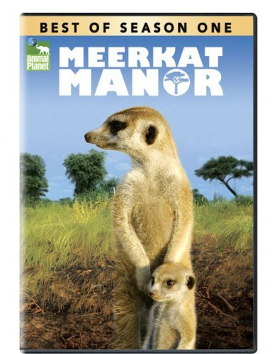 Meerkat Manor Season Best Of Meerkat Manor Nr