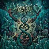 Decrepit Birth Axis Mundi (blue Yellow Splatter Vinyl)