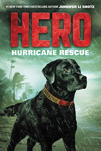 Jennifer Li Shotz Hero Hurricane Rescue