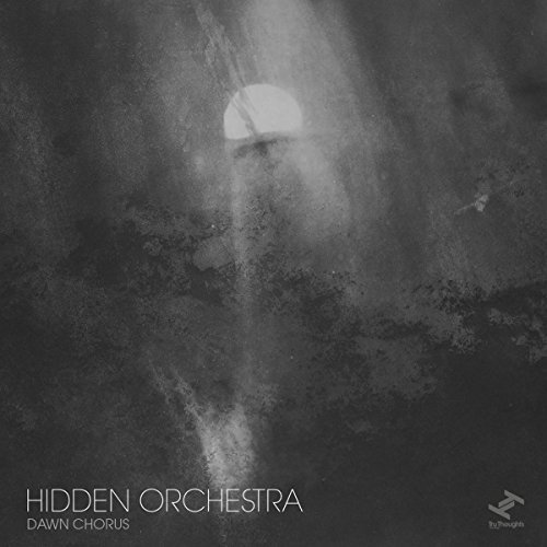 Hidden Orchestra Dawn Chorus
