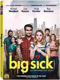 The Big Sick Nanjiani Kazan DVD R