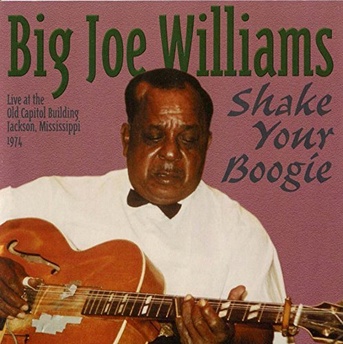 Big Joe Williams Shake Your Boogie
