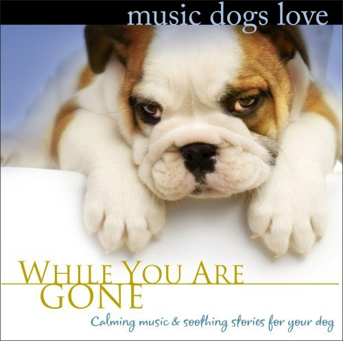 Bradley Joseph Music Dogs Love While You Are