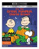 Peanuts It's The Great Pumpkin Charlie Brown 4k G