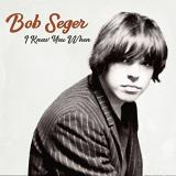 Bob Seger I Knew You When