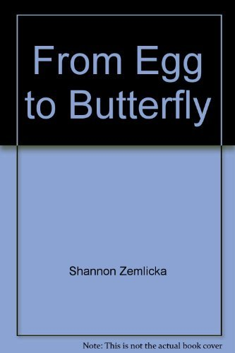 Shannon Zemlicka From Egg To Butterfly
