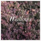 Wallows Spring Ep (pink & Green Vinyl) Pink & Green Vinyl