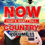Now That's What I Call Country Vol. 11
