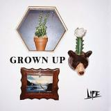 "Life Grown Up 7"" Vinyl"