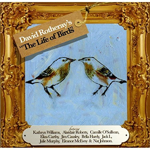 David Rotheray Life Of Birds