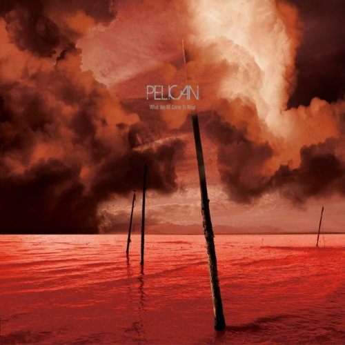 Pelican What We All Come To Need