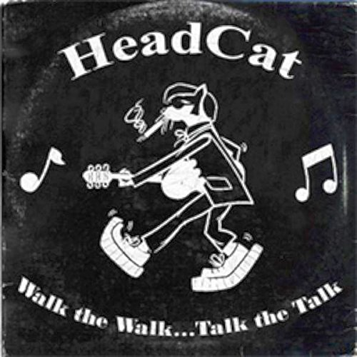 Head Cat Walk The Walk Talk The Talk