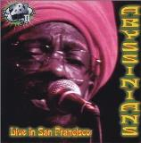 Abyssinians Live In San Francisco