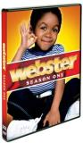 Webster Season 1 DVD Nr