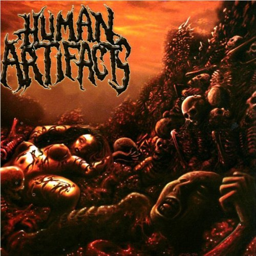 Human Artifacts Principles Of Sickness