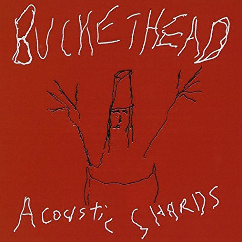 Buckethead Acoustic Shards