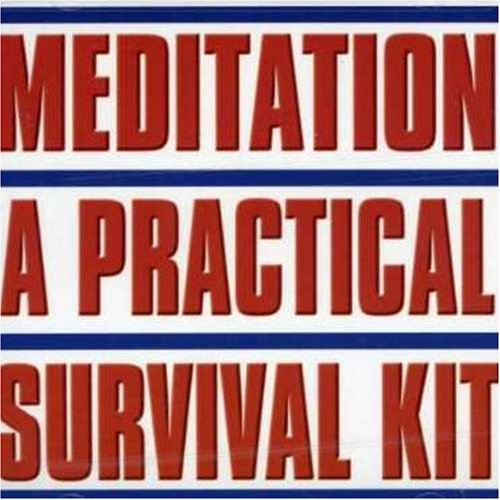 Allen Holmquist Meditation Practical Survival