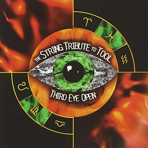 Tribute To Tool Third Eye Open String Tribute T T Tool