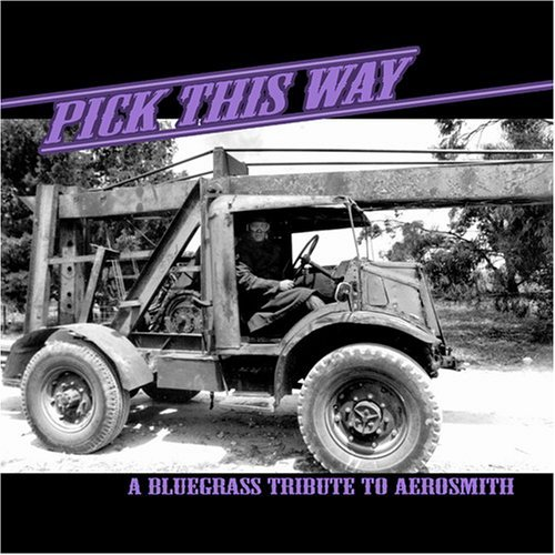 Tribute To Aerosmith Pick This Way Bluegrass Tribu T T Aerosmith