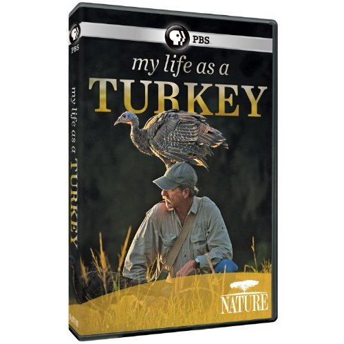 My Life As A Turkey Nature Ws Nr