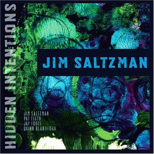 Jim Saltzman Hidden Intentions