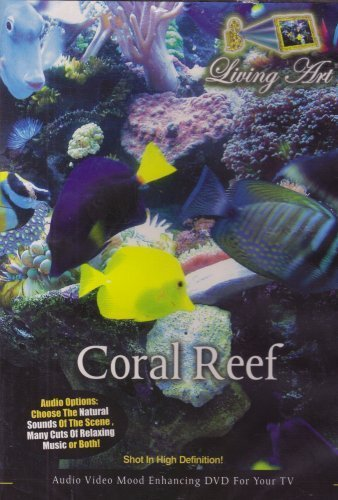 Living Art Coral Reef Coral Reef