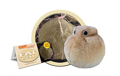 Giant Microbes Fat Cell