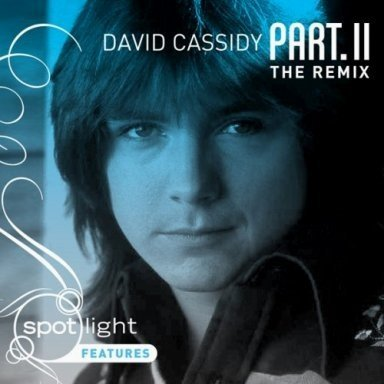 David Cassidy Part. Ii The Remix