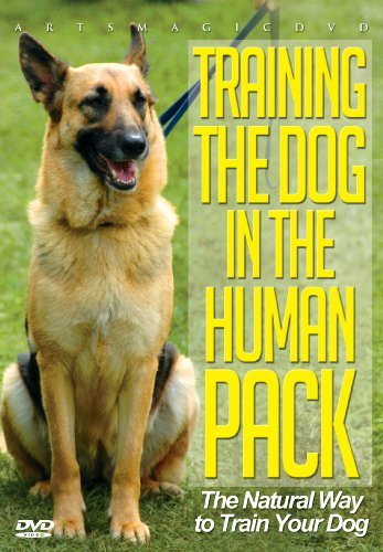 Training The Dog In The Human Training The Dog In The Human Nr