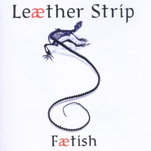 Leaether Strip Faetish