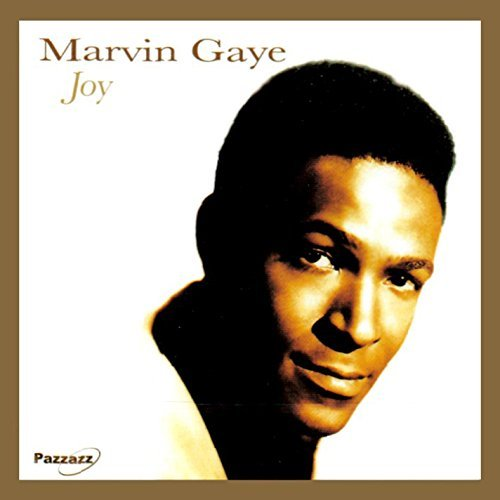 Marvin Gaye Joy