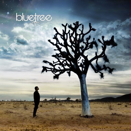 Bluetree God Of This City